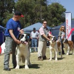 Goldfields show in SA
