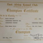 Youngstead Rasputin Championship Certificate.