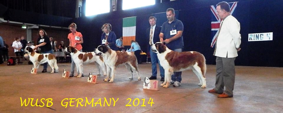 about-us-wusb-2014-germany-2