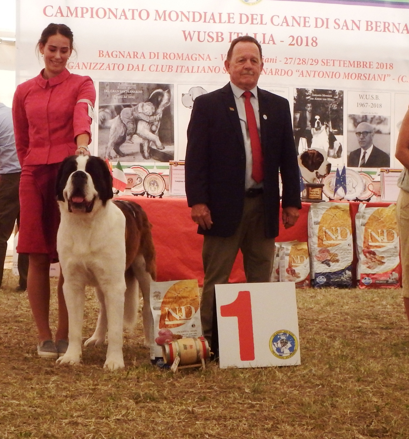 About Us   Youngstead Saint Bernards